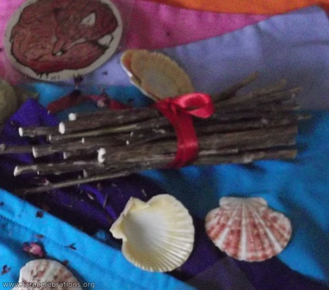 8may2016 - winter sticks and scallop shells