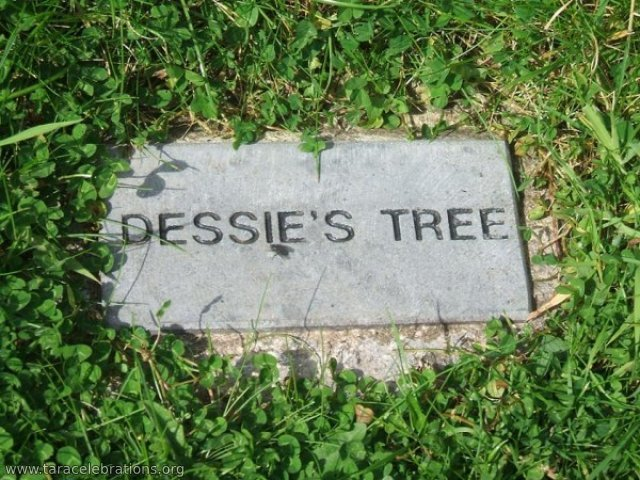 dessies tree plaque