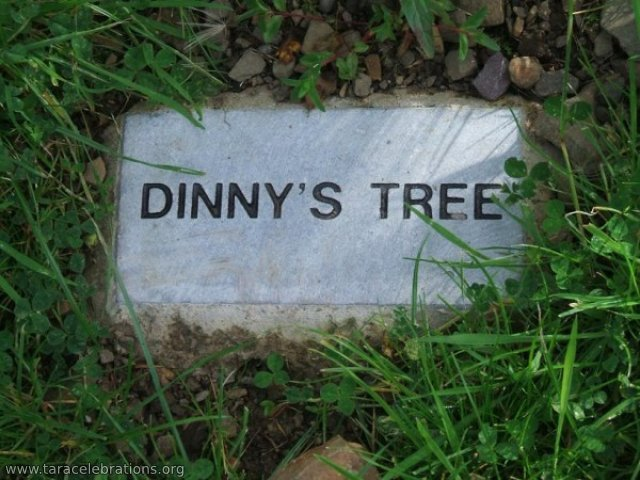 dinnys tree plaque